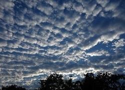 712.朝の空.jpg